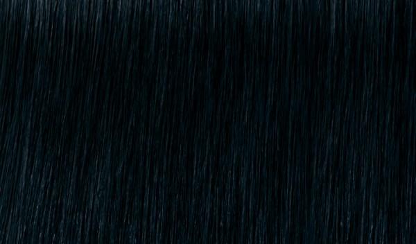 1.1 Blauschwarz 60ml