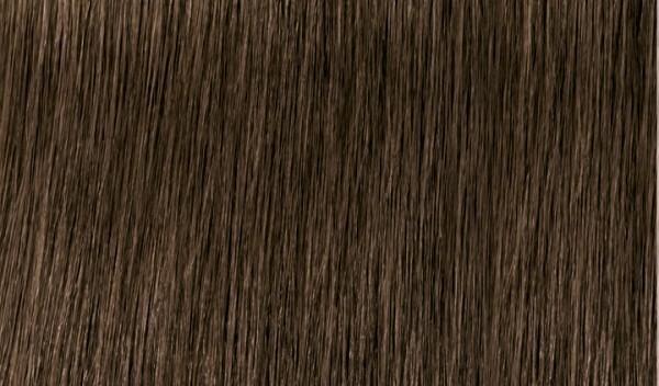Xpress Color 6.00 Dunkelblond Natur Intensiv 60ml